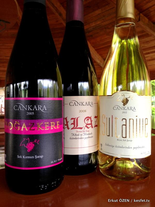 şarap rotası Cankara