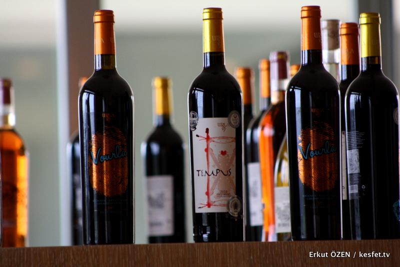 şarap rotası
