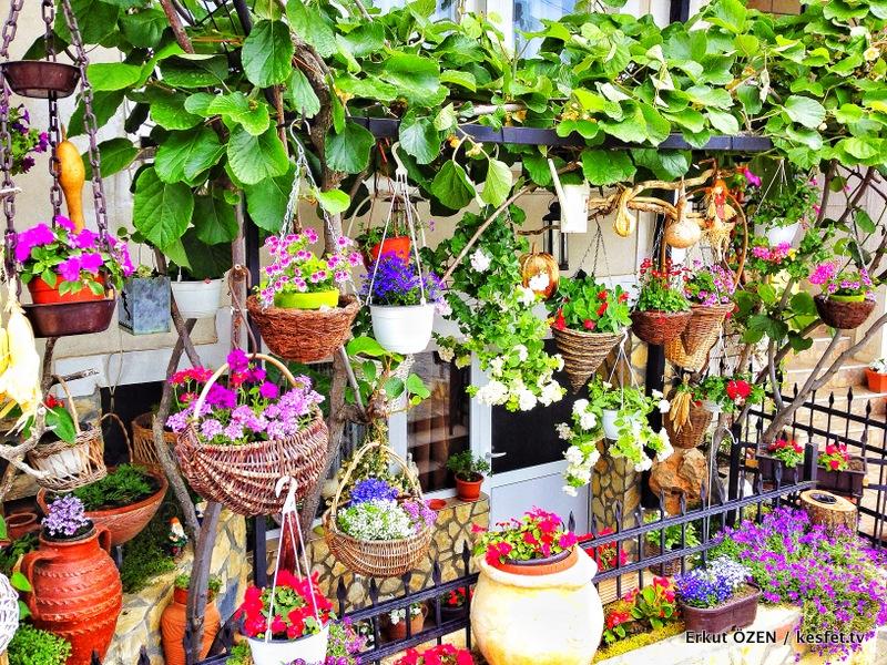 Balkan Turları Ohrid Gezisi