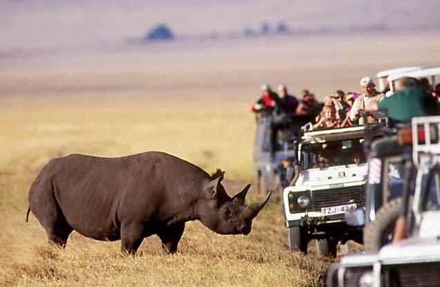 Tanzanya'ya Gitmek İçin 4 Neden Tanzanya'ya Gitmek İçin 4 Neden