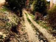 Trekking Yürüyüşü