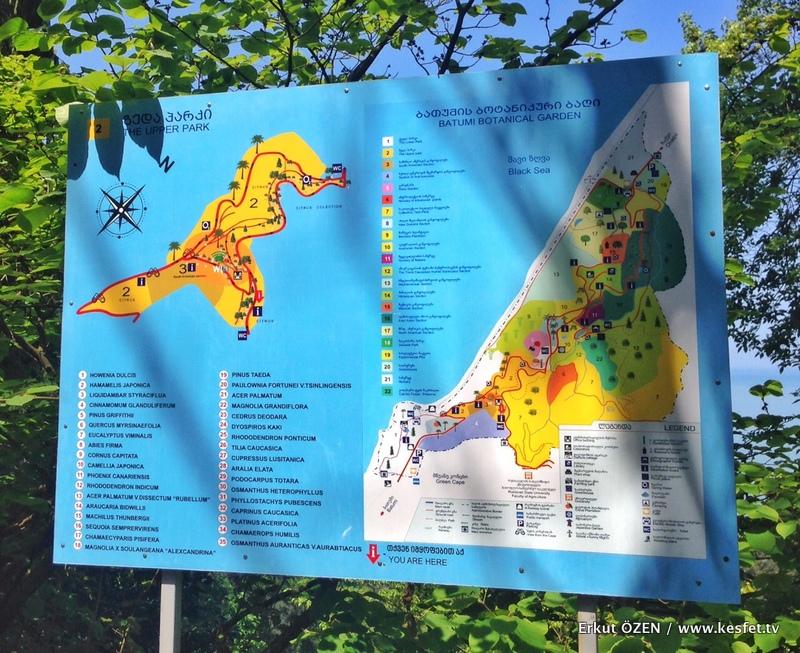 Batum Botanik Parkı plan