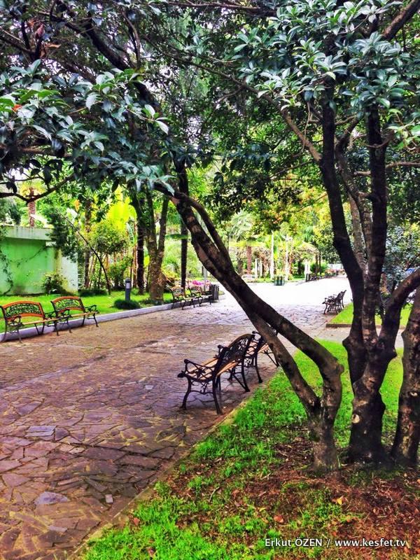 şehir parkları