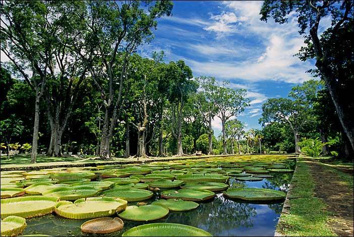 Mauritius'ta Gezilecek Yerler doğa
