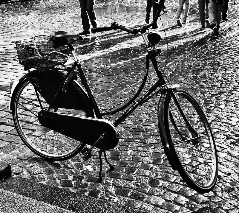 bisiklet dünyası şehir