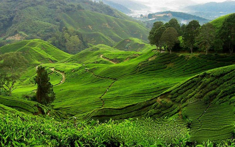 Malezya Langkawi malezya gezilecek yerler