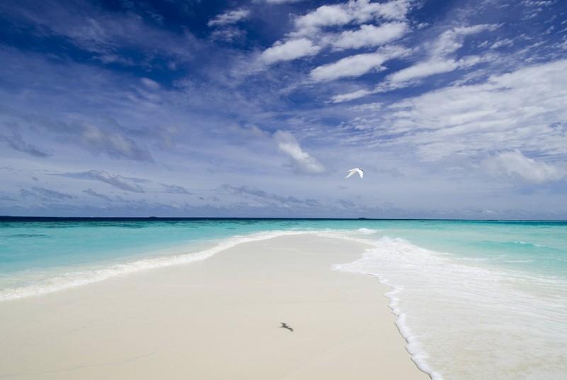 banyan adası Maldivler plajları