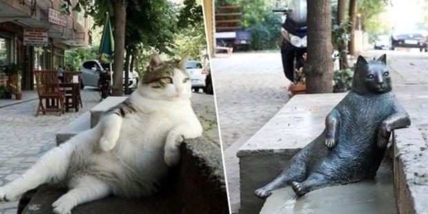 kedi tombili heykeli