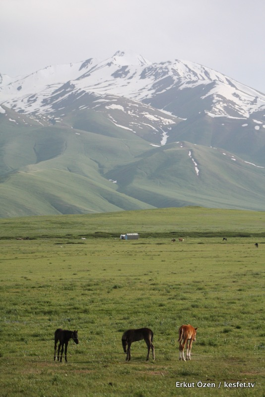Susamyr Vadisi Kırgızistan gezisi