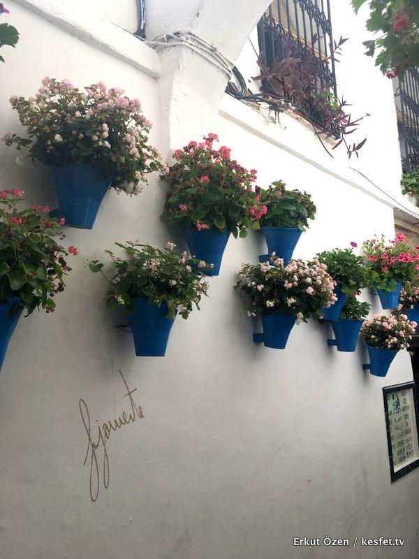 Cordoba gezi rehberi Çiçekli sokak