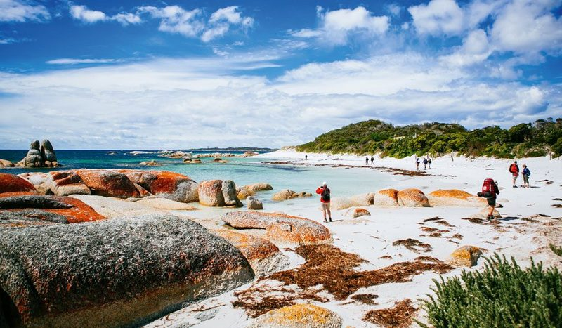 Dünyanın En Güzel Plajları Tazmanya