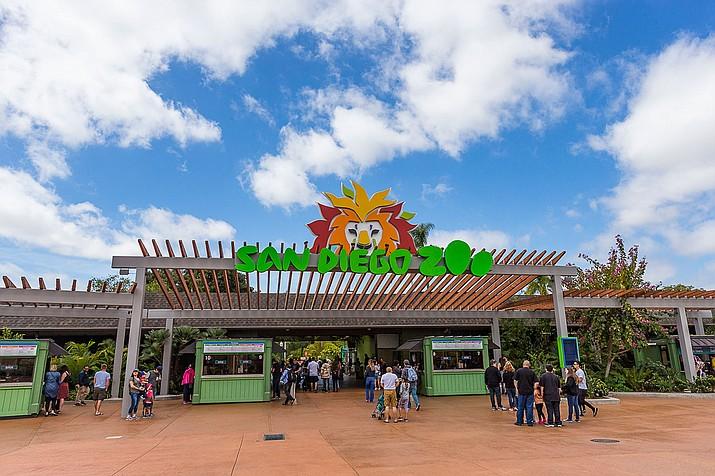 Hayvanat Bahçeleri San Diego