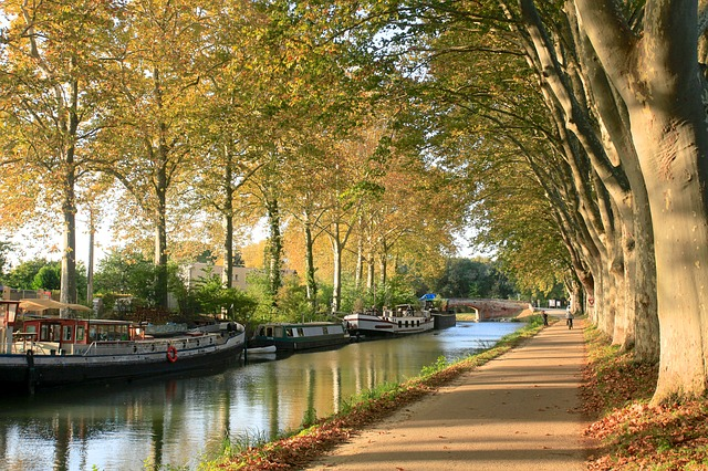 Toulouse romantik yerler