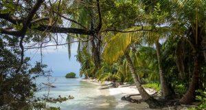 Tropikal keşifler haritası