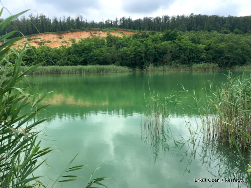 Avcı Koru Göl